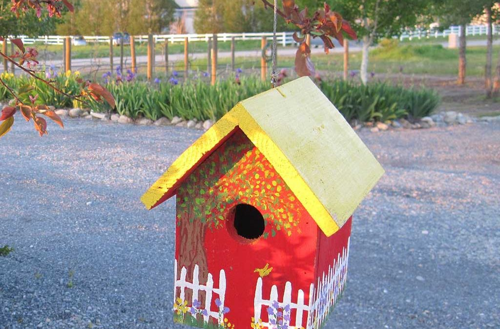 Paint and Decorate a Birdhouse