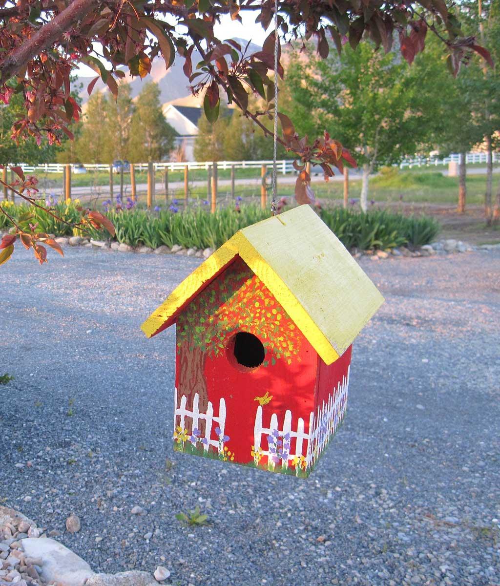 Painted Bird Houe